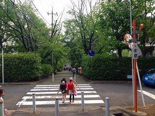 美しが丘小学校と国学院幼稚園への通学路(通園路)