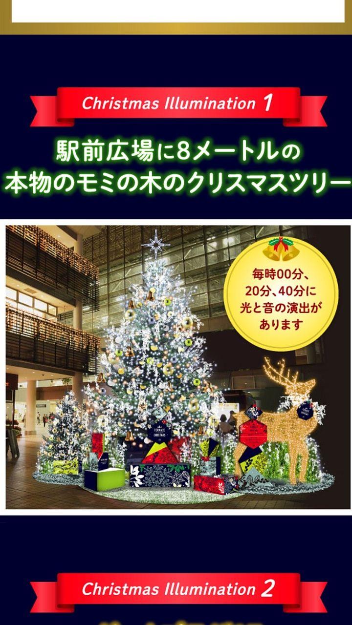 駅前広場に8メートルの本物のモミの木のクリスマスツリー。毎時00分、20分、40分に光と音の演出があります。
