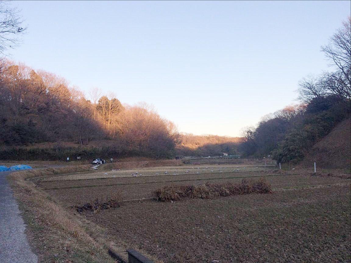 寺家ふるさと村の景色