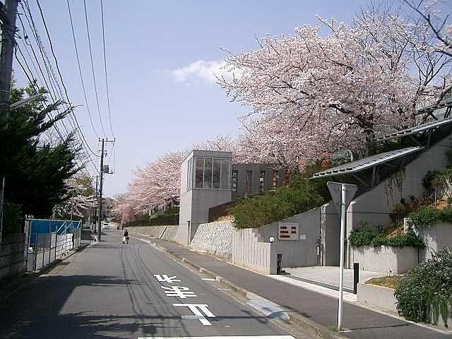 劇団四季の桜