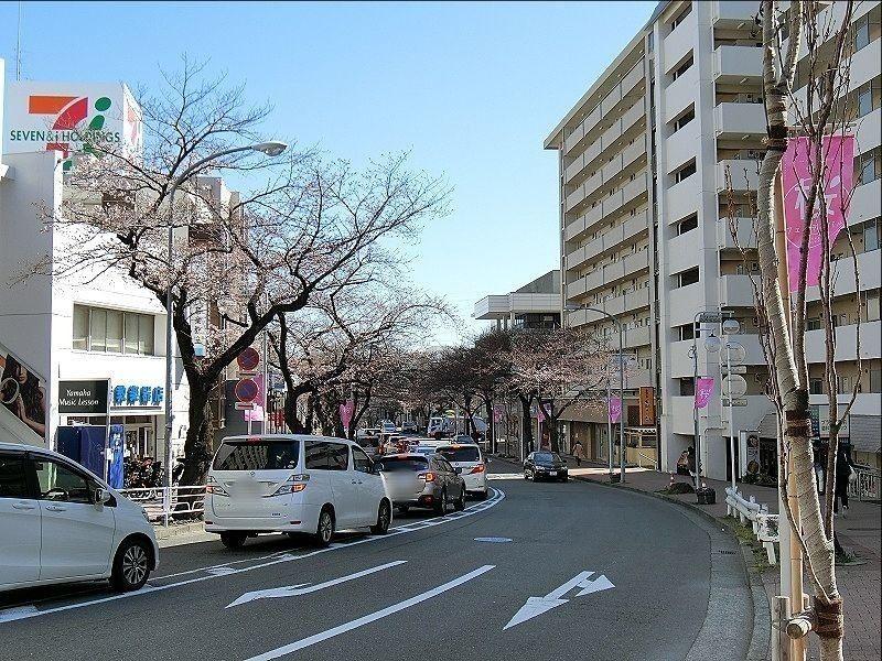 今日の昼12頃のたまプラーザ駅前の桜