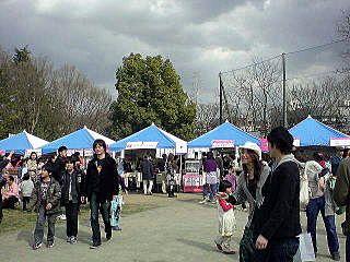 2010年たまプラーザの桜まつり(たまプラーザ桜フェスティバル)