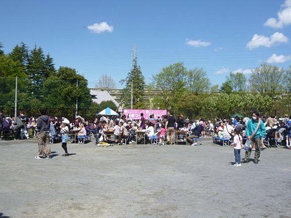2013年たまプラーザの桜まつり(たまプラーザ桜フェスティバル)