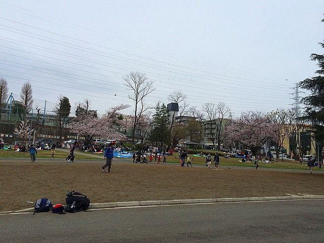 2016年たまプラーザの桜まつり(たまプラーザ桜フェスティバル)