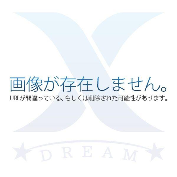 荏子田ビル301・2DKの募集図面