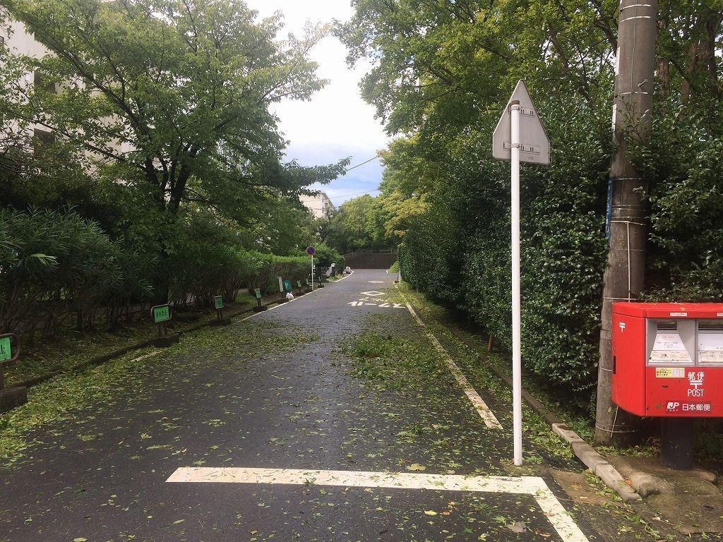 台風通過後のたまプラーザ団地一街区から四街区方向の様子