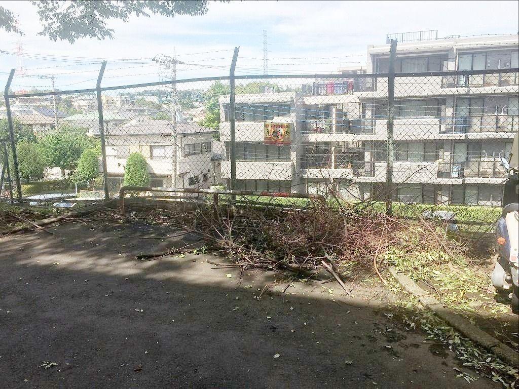 台風通過後のたまプラーザ団地の折れた枝