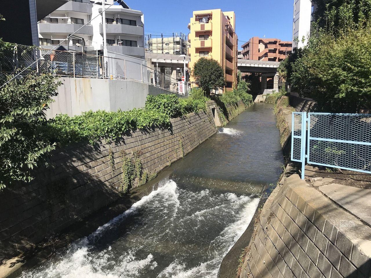 あざみ野駅近く中村大橋の早渕川の様子