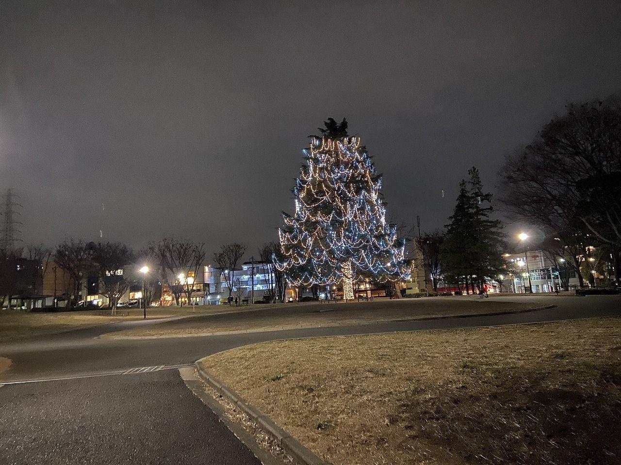2019年の美しが丘公園のクリスマスツリー