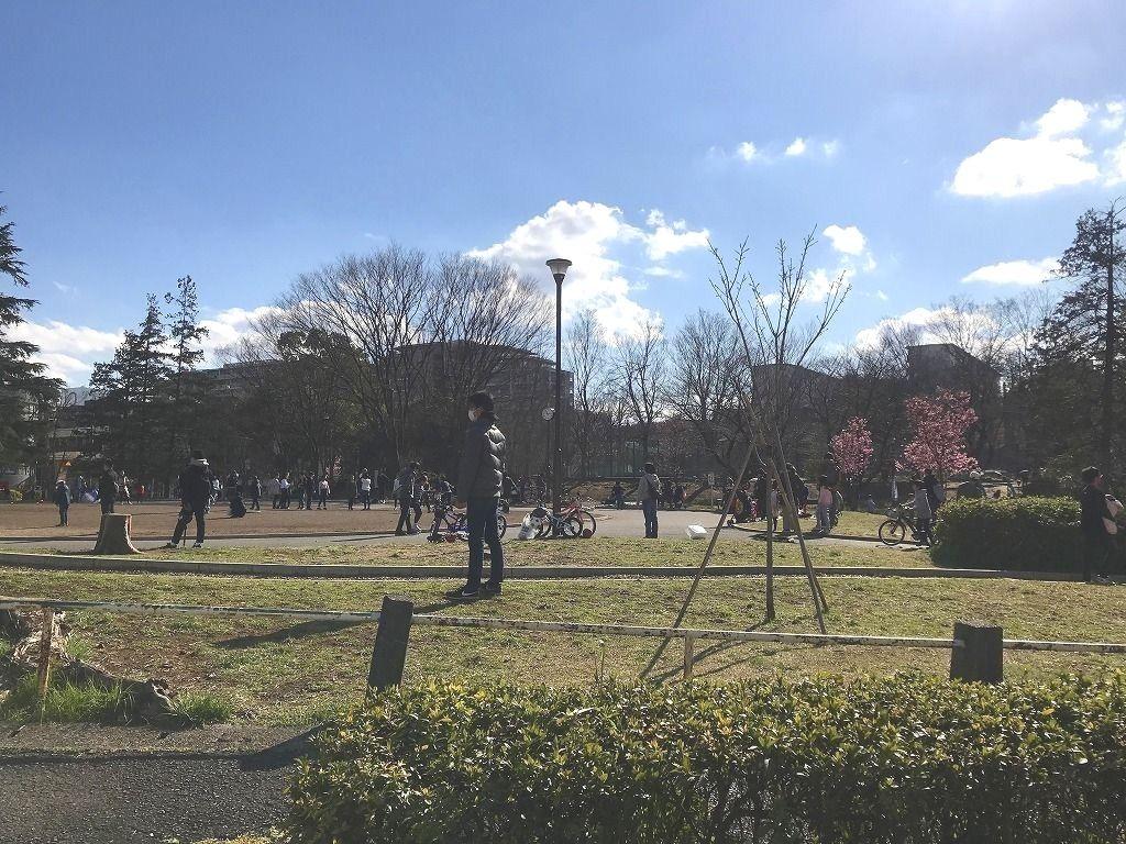 2020年3/15(日)たまプラーザの桜咲き始め前の美しが丘公園の様子です。