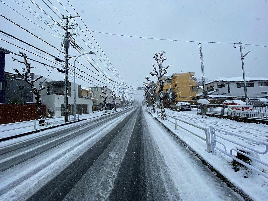 3/29付のたまプラーザ・美しが丘3丁目・4丁目の雪の様子。