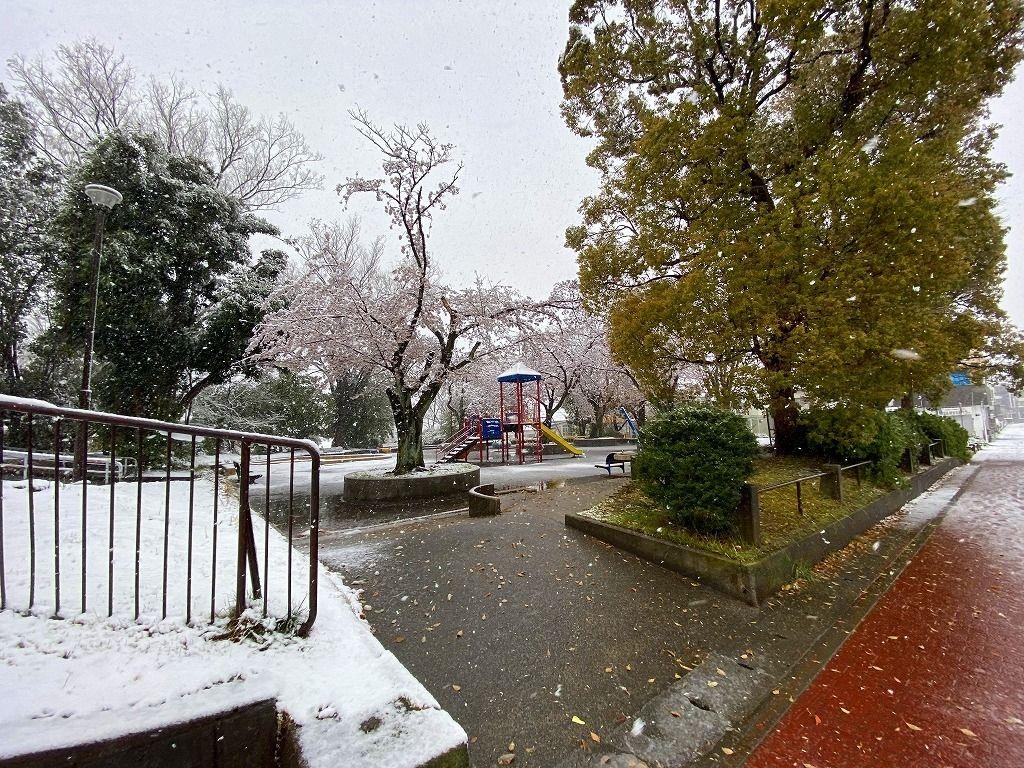 3/29付のたまプラーザ山内公園の雪の様子。美しが丘4丁目にて。