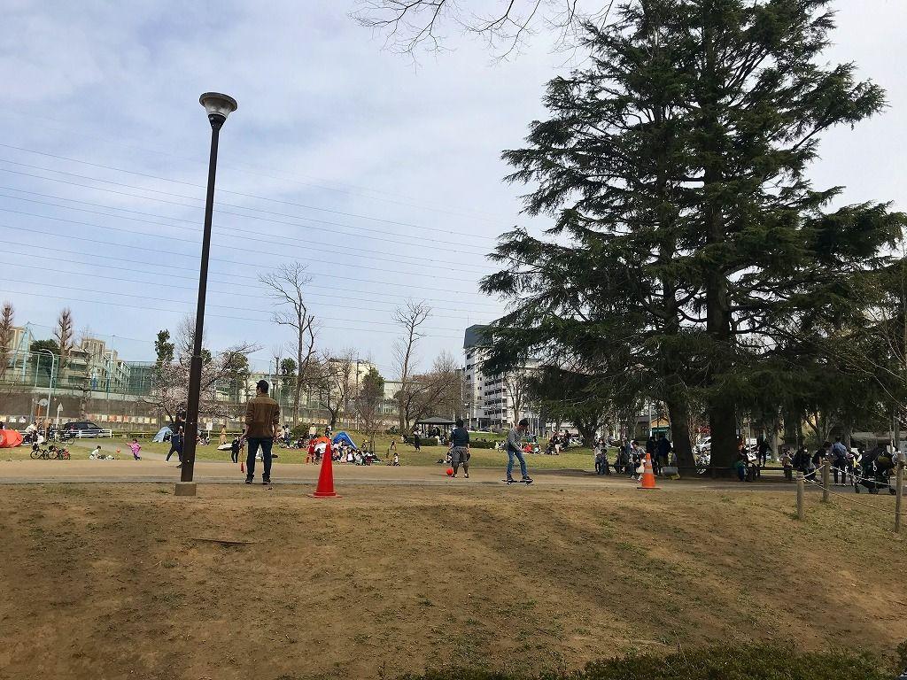 2020年3/22(日)美しが丘公園の桜の様子