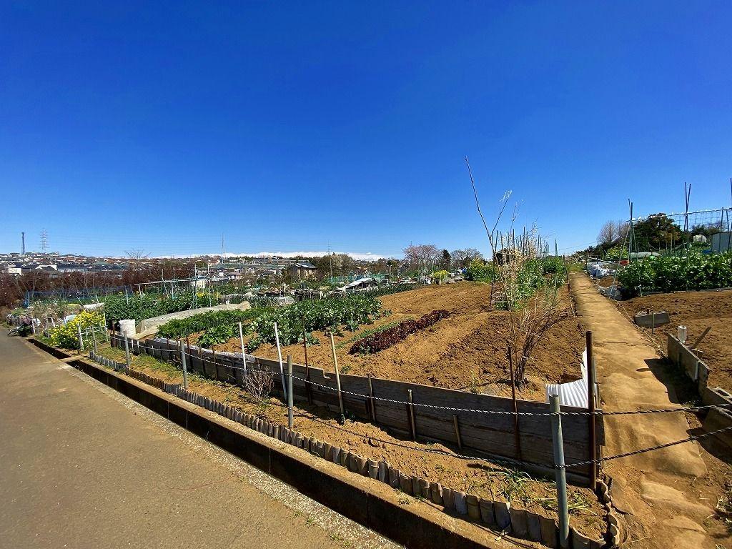 シェア畑・美しが丘の様子です。貸し農園・体験農園・貸し農地・市民農園としても楽しめます。エリアは美しが丘西周辺、住所は横浜市青葉区元石川町7380です。