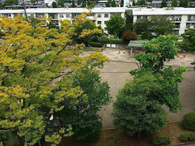 ドーナツ公園・たまプラーザ団地(敷地内)