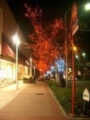 2006年 たまプラーザ クリスマス