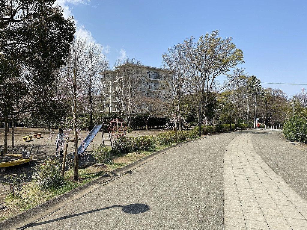 たまプラーザ団地さんかく公園の桜