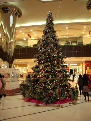 東急デパート内のクリスマスツリー 2010年 たまプラーザ クリスマス
