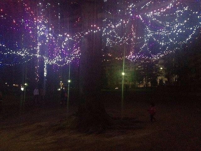 美しが丘公園のクリスマスツリー 2013年 たまプラーザ クリスマス