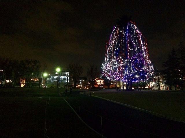 美しが丘公園のクリスマスツリー 2014年 クリスマスのたまプラーザ